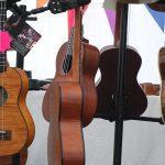 John Heald - Bonsai Guitars